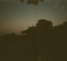 Silhouette  by Niralee Modha