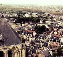 Top of Bourges Cathedral Tower by identit3a
