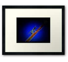 ©BS Wasp Paintography Framed Print