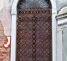 Wrought Iron Door by svchristian