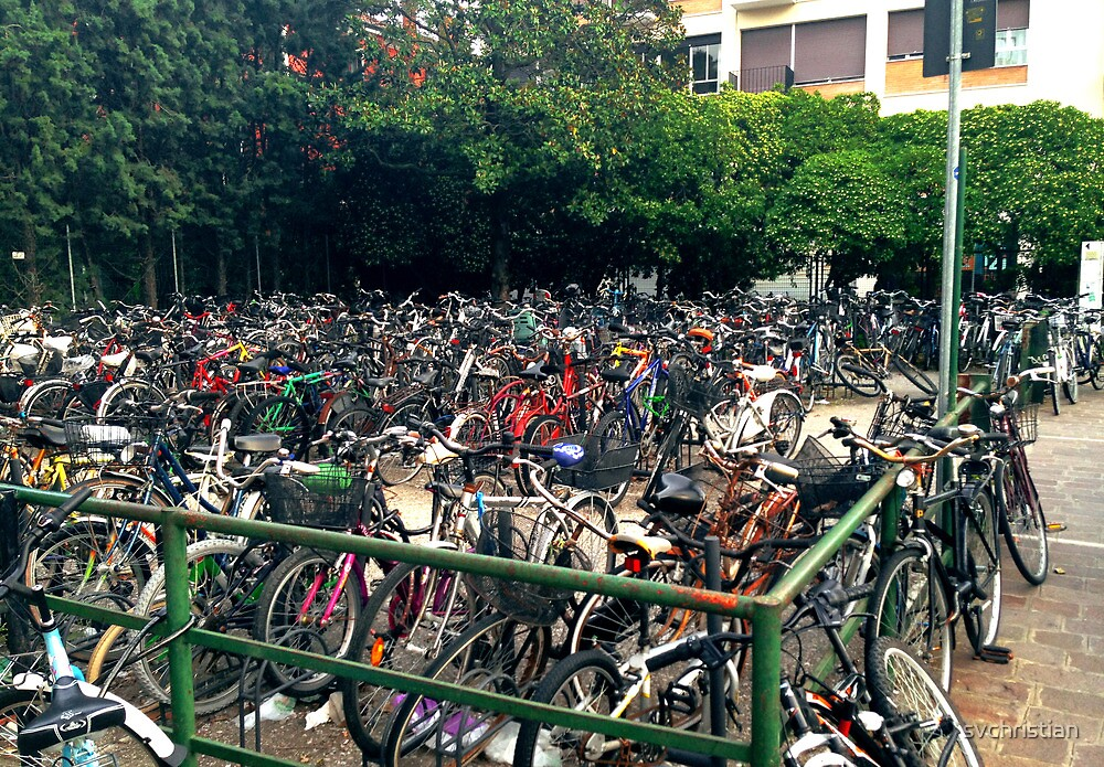 Bike Multitude by svchristian