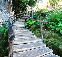 wooden stairway by maydaze