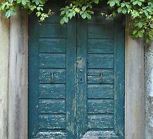Blue Door by svchristian
