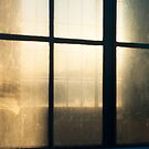 The light beyond the window by ionclad