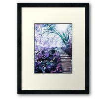 enchanting path Framed Print