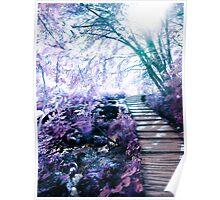 enchanting path Poster