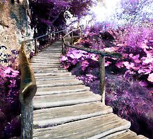 wisteria stairs by maydaze