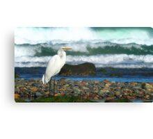 Crane bird 01 Canvas Print