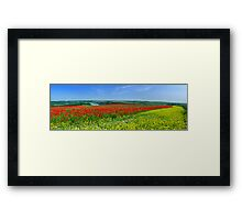 Primary Panorama Framed Print