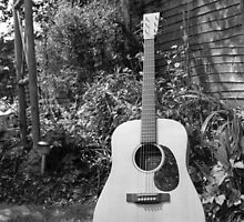 Guitar in the Garden by James Taylor