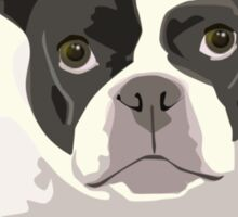 Black and White French Bulldog - Vector Art Portrait Sticker