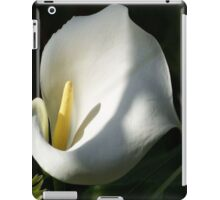 White Calla Lilies Over Black Background In Soft Focus iPad Case/Skin