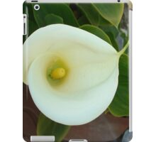 Overhead Shot Of A Heart Shaped Cream Calla Lily iPad Case/Skin
