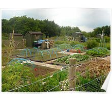 Allotments in June Poster