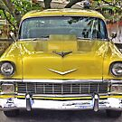 Yellow Bel Air by Monte Morton
