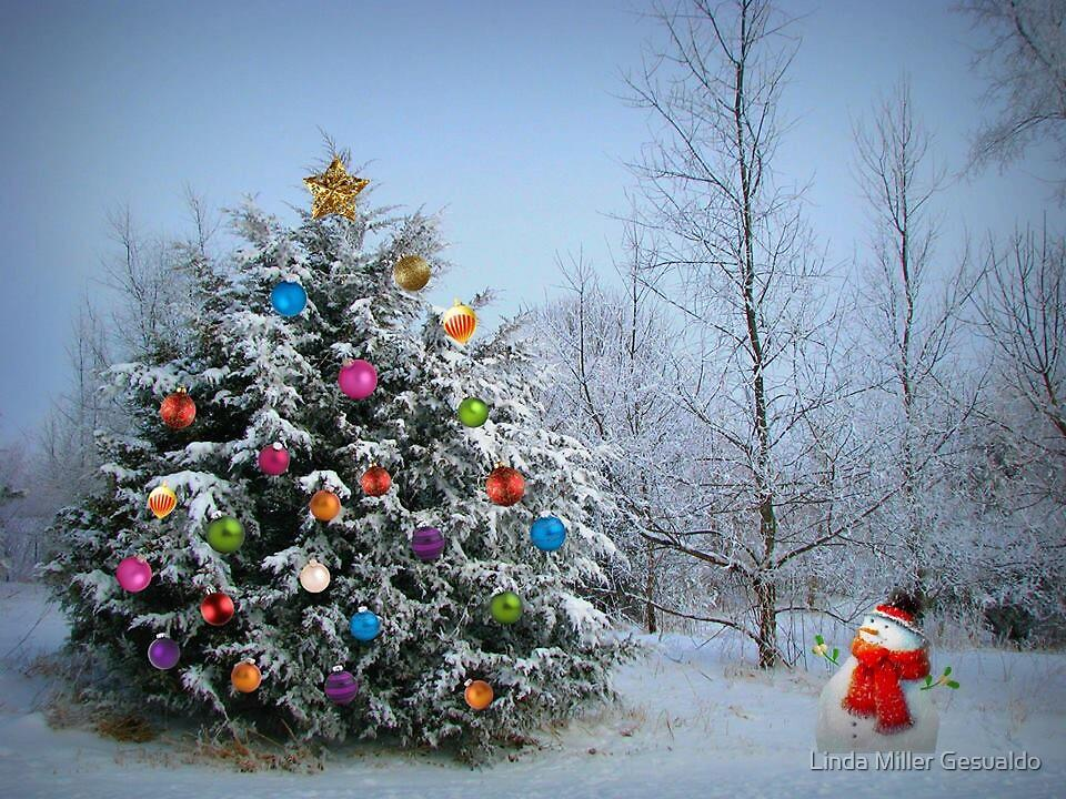 Frosty See's Christmas by Linda Miller Gesualdo