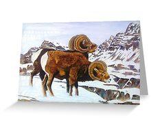 Colorado Bighorns Greeting Card