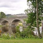 River Bridge in Builth Wells by lezvee