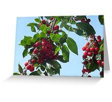 Fruit on tree Greeting Card