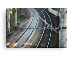 catenary Canvas Print