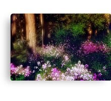 Wooded Wonderland Canvas Print
