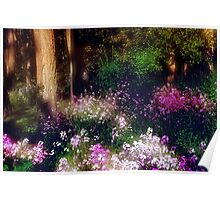 Wooded Wonderland Poster
