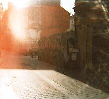 Valencia by Niralee Modha
