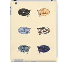 Watercolor Kitties iPad Case/Skin