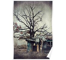 Decay Barn Poster