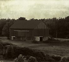 The Country Barn by vigor