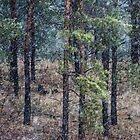Pines original by Mats Gustafsson
