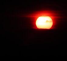 Glowing Globe by Hannah Saveall