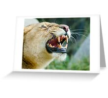 Lion Grin Greeting Card