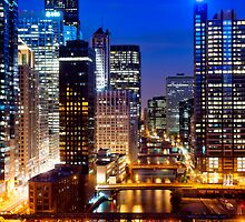Lightened Up Chicago by Daisy Yeung