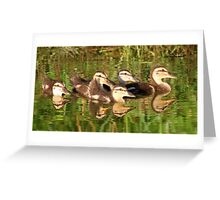 Baby Mallards with reflection Greeting Card