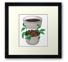 Organic Coffee Framed Print