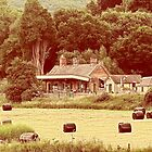 Shillingstone Railway Station Dorset by delros