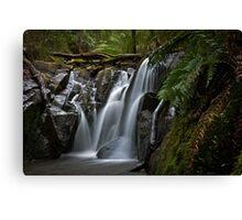 Olinda Falls Mt Dandenong Canvas Print