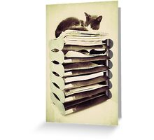 In-tray kitty Greeting Card