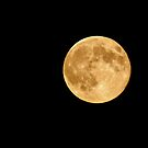 super moon by Steve Shand
