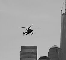 Tourist Helicopter  by pmarella
