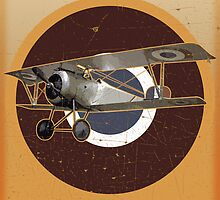 Vintage Look Nieuport fighter biplane on French Emblem by VintageSpirit