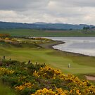 Castle Stuart Golf Course by diggle