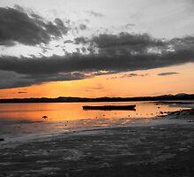 boat in the lake by dedakota