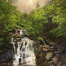 Katterskill Falls by John Rivera