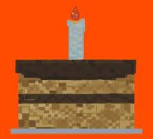 Minecraft Birthday Cake  Kids Clothes