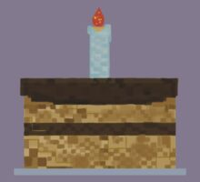 Minecraft Birthday Cake  Kids Clothes