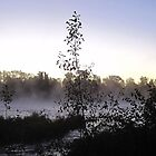 Foggy Waking River  by MoniqueFlynn