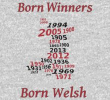Welsh nations the winning years Wales Kids Tee