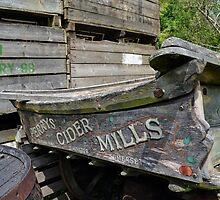 Where The Cider Apples Grow by lynn carter